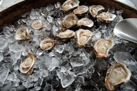 gulf oysters austin