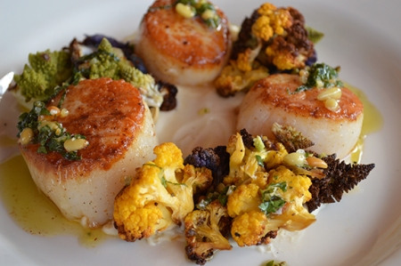 scallop recipe austin